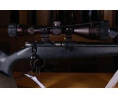 BRNO 452 Silhouette .17 Hornady Magnum Rimfire (.17HMR)