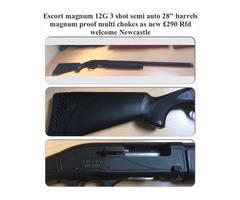 Escort Magnum 12